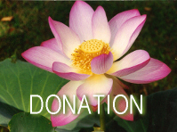 Inspiration for the Week - Single Donation