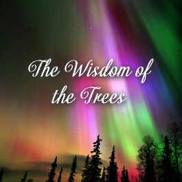 The Wisdom of the Trees - Essences of Divine Light